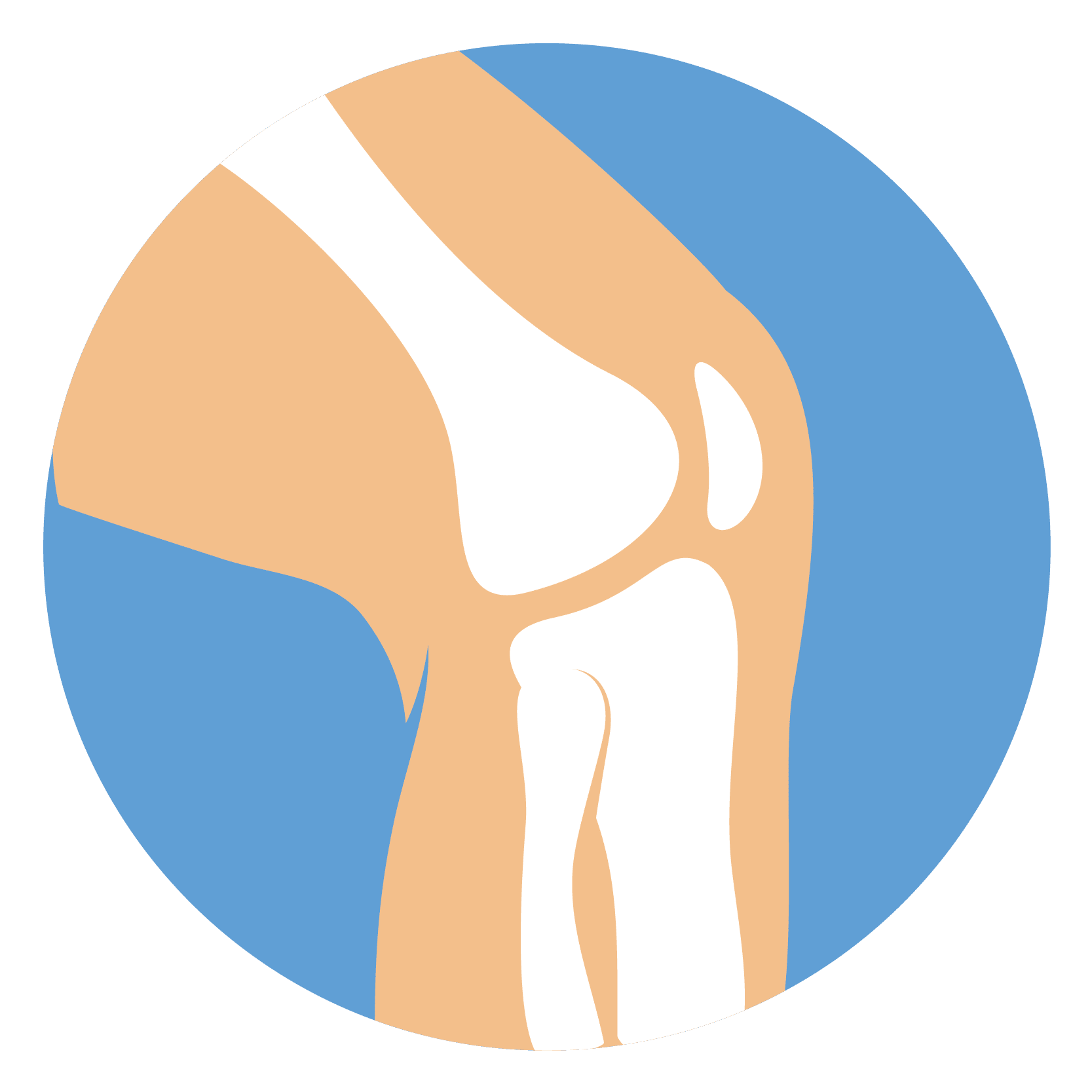 Musculoskeletal Ultrasound Lifescan Imaging Services